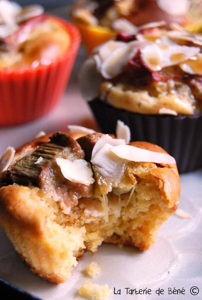cupcake rhubarbe et sirop d'érable 2