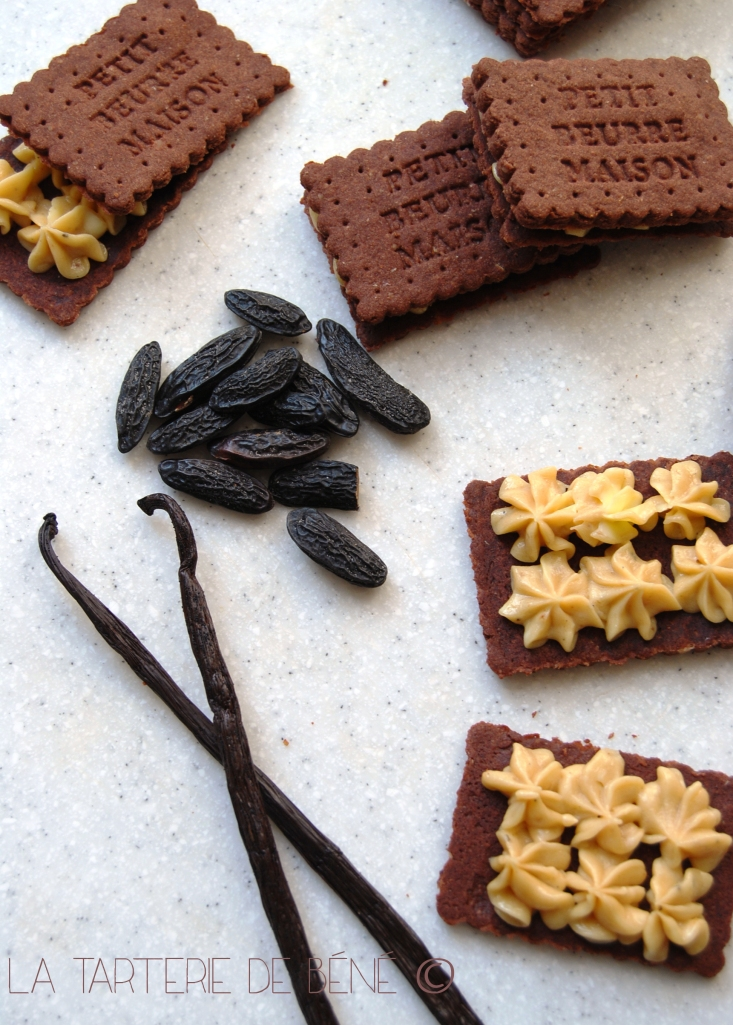 Biscuits chocolat noisette fourrés vanille et tonka wr