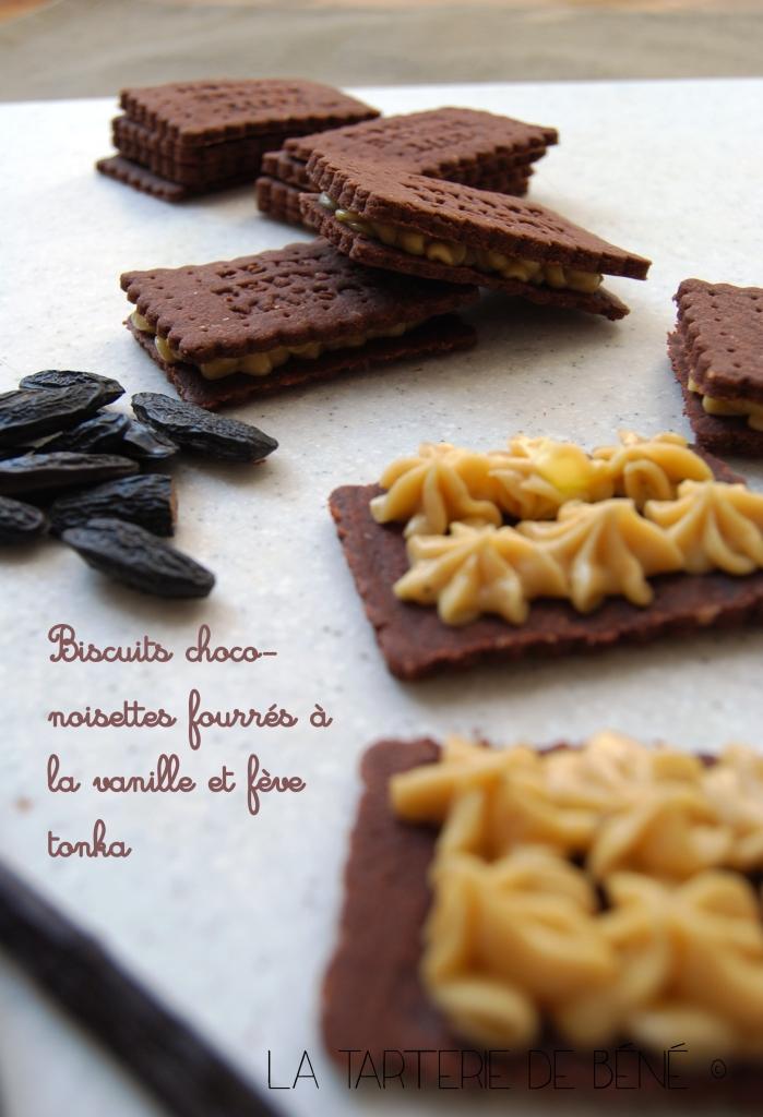 Biscuits chocolat noisette fourrés vanille et tonka wr2