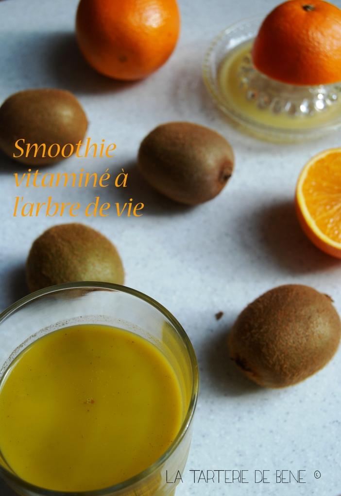 smoothie vitaminé à l'arbre de vie