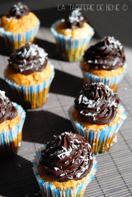cupcake  noix de coco et chocolat vegan wr1