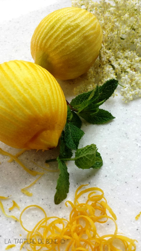 citrons 1