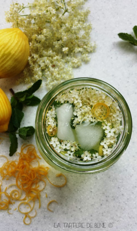 eau de fleurs de sureau 1