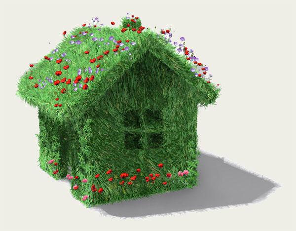 pour une maison plus verte make me green. Black Bedroom Furniture Sets. Home Design Ideas