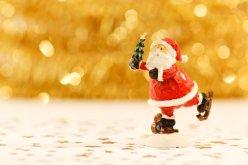 santa-claus-christmas-beard-celebration-41963